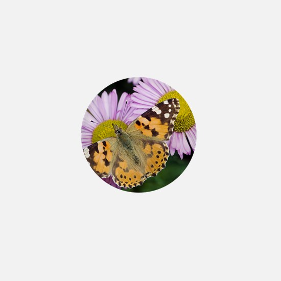 Painted Lady butterfly Mini Button