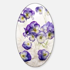 Pansies (Viola sp.) Decal