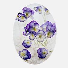 Pansies (Viola sp.) Oval Ornament