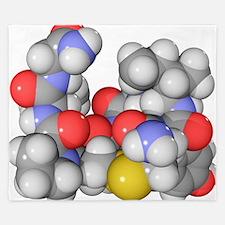 Oxytocin neurotransmitter molecule King Duvet