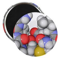 Oxytocin neurotransmitter molecule Magnet