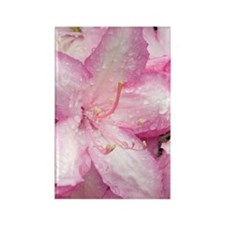 Pacific rhododendron Rectangle Magnet