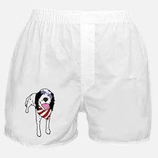 StarSetter2 Boxer Shorts