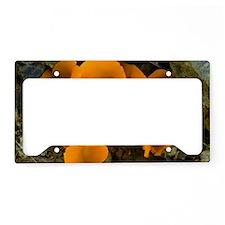 Orange Peel Fungus (Aleuria a License Plate Holder