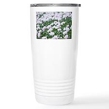 Opium poppies (Papaver somnifer Travel Mug