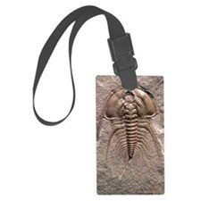 Olenellus gilberti trilobite fos Luggage Tag