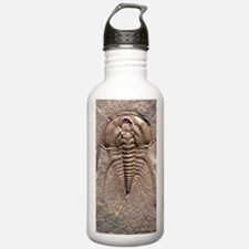 Olenellus gilberti tri Water Bottle