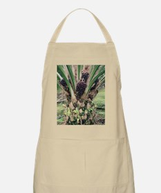 Oil palm tree with fruits Apron