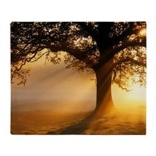 Oak tree at sunrise Throw Blanket