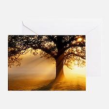 Oak tree at sunrise Greeting Card