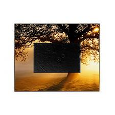 Oak tree at sunrise Picture Frame