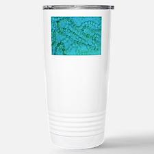 Nostoc algae Stainless Steel Travel Mug