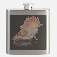 Nudibranch Flask