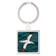 Northern gannet in flight Square Keychain