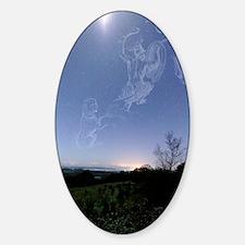 Night sky Sticker (Oval)