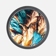 NMDA crystals, light micrograph Wall Clock