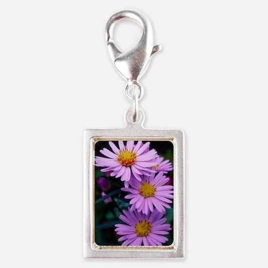 New York aster flowers (Aste Silver Portrait Charm