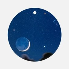 Night sky Round Ornament