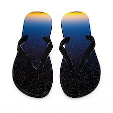 Night sky Flip Flops