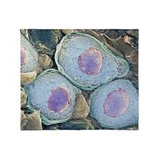 Nerve cells, SEM Throw Blanket