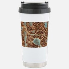 Nerve cells and glial cells, SE Travel Mug