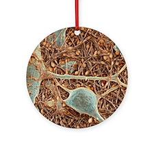 Nerve cells and glial cells, SEM Round Ornament