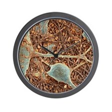 Nerve cells and glial cells, SEM Wall Clock