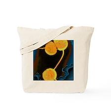 Neisseria gonorrhoeae bacteria, TEM Tote Bag