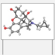 Naltrexone drug molecule Yard Sign