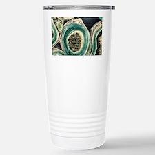 Myelinated nerves, SEM Travel Mug