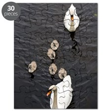 Mute swan and cygnets Puzzle