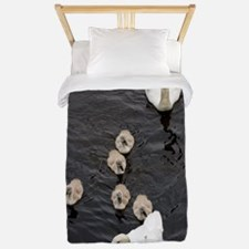 Mute swan and cygnets Twin Duvet