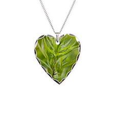 Mugwort (Artemisia vulgaris) Necklace