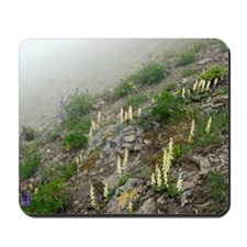 Mountain flowers Mousepad