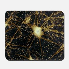 Motor neurons, light micrograph Mousepad