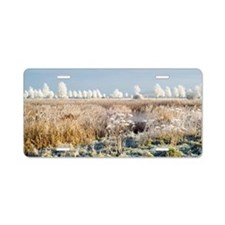 Morning frost Aluminum License Plate