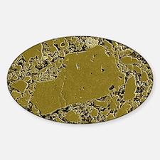 Moon rock, SEM Sticker (Oval)
