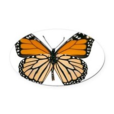 Monarch butterfly Oval Car Magnet