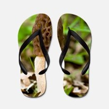 Morel (Morchella esculenta) Flip Flops