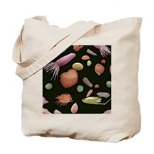 Mixture of flower and grass seeds, SEM Tote Bag