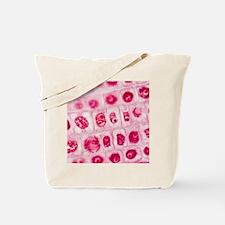 Mitosis, light micrograph Tote Bag