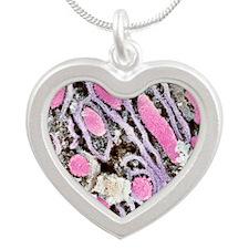 Mitochondria, SEM Silver Heart Necklace