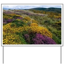 Mixed wildflowers on moorland Yard Sign
