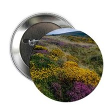 """Mixed wildflowers on moorland 2.25"""" Button"""