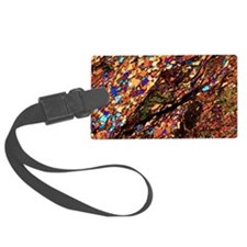 Mica schist, thin section, polar Luggage Tag