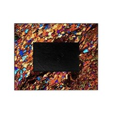Mica schist, thin section, polarised Picture Frame