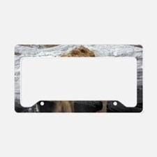 Meltwater emerging from Cruso License Plate Holder