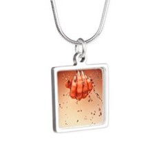 Mercury flowing through fi Silver Square Necklace