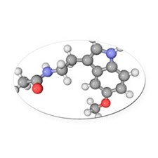 Melatonin hormone molecule Oval Car Magnet