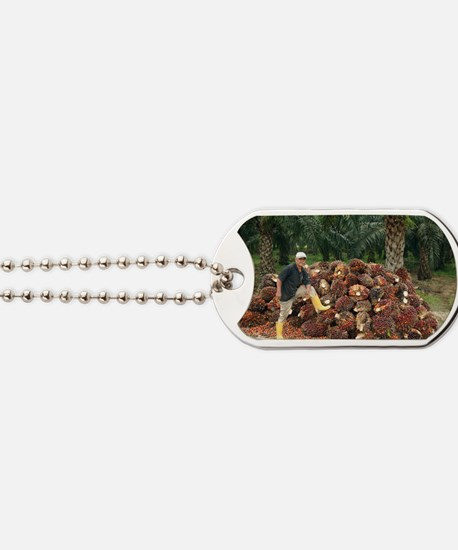 Mature man posing by oil palm fruits Dog Tags